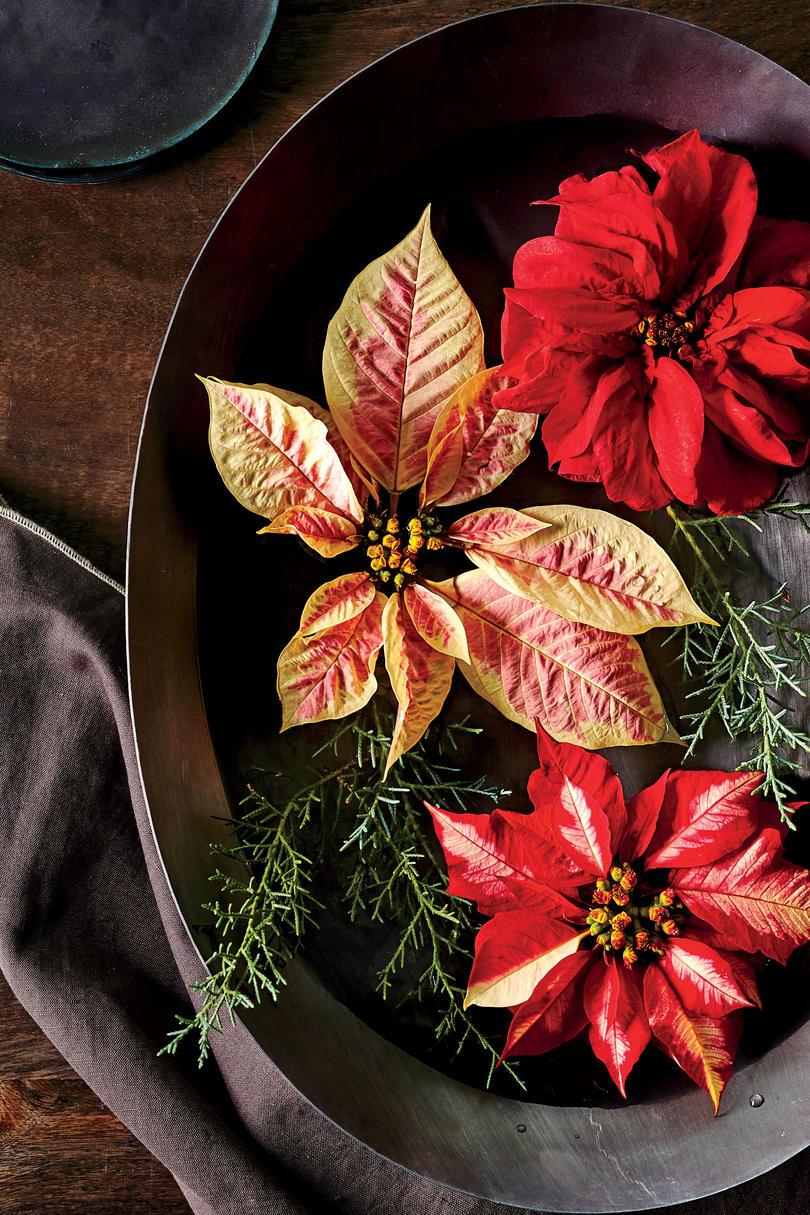 Flydende Poinsettia Blooms in Bowl