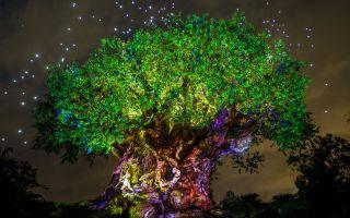 يمكنك تخمين كيف يتم نحت العديد من الحيوانات في شجرة الحياة في العالم ديزني؟