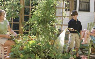 Snadná zahrada Každý může růst