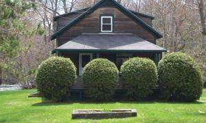 Skjul ikke dit hus med buske!