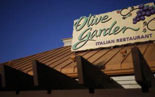 10 тайни Всеки трябва да знае за маслиновата градина