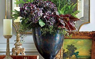 Vytvořte úžasné podzimní uspořádání Hydrangea