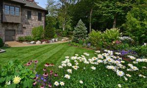 7つの秘密、健康的な、緑豊かな芝生に