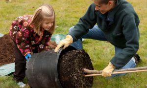 Febrero es nuestro tiempo para plantar y transplantar