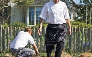 مطاعم ولاية كارولينا الشمالية Rely on Local، Organic Produce