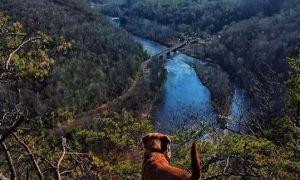 Bedste steder at se Fall Scenery i syd