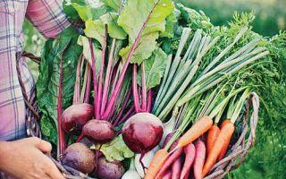Селскостопански ренесанс