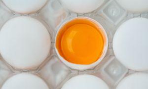 Příčiny vaječných žloutků jsou odlišné barvy