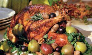 Jak vařit Turecko