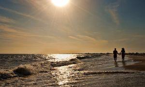 Co vědět (a lásko) o ostrově Dauphin, Alabama